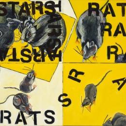 Rat Meeting